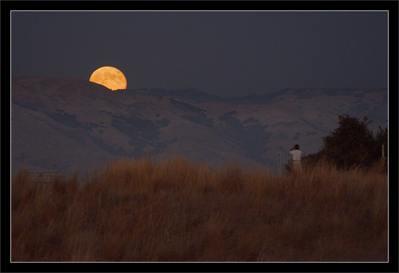 Tweet the Moon  The fall Harvest Moon rises over the East Bay mountains.  A man stops on his walk to watch the moonrise and take a photo with his phone.  East Bay Mountains: Diablo Range San Francisco Bay Area, California  30-SEP-2012