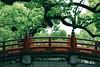 Exploring Dazaifu