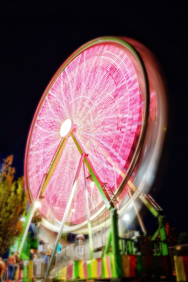 Ferris Wheel Flower