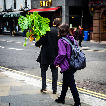 Taking His Plant for a Walk