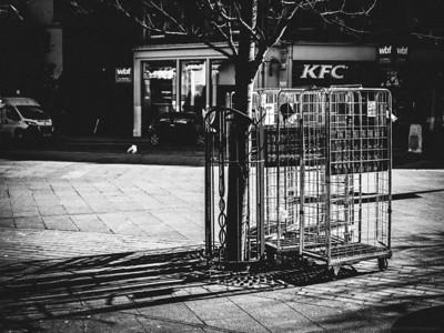 Escape the Cages