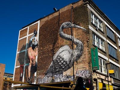 The Crane - Roa