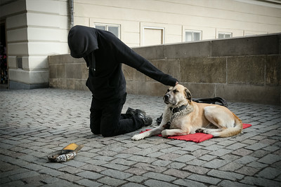 Beggar and his dog on Charles bridge, Prague