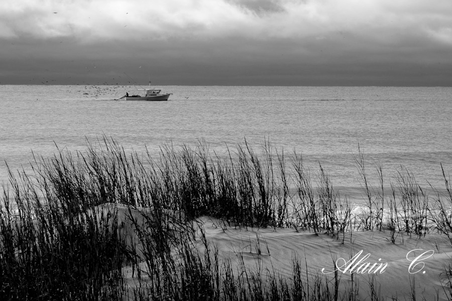Fisherman on a cloudy day