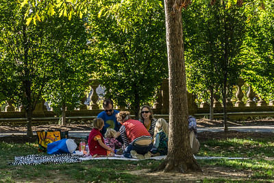 On such a beautiful, there were many families enjoying a picnic.
