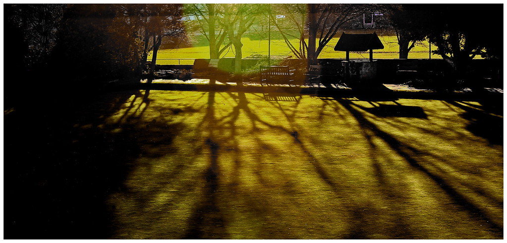 Sun on the Bowling Green