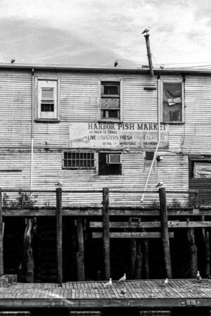 Portland, Maine, 2012