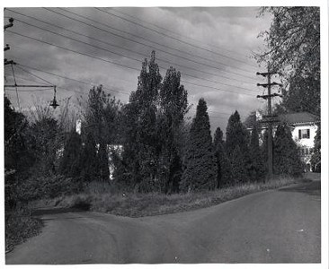 Columbia Avenue (00387)