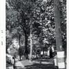 Sidewalk (00556)
