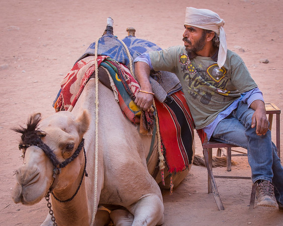 CAMEL WITH ITS HANDLER
