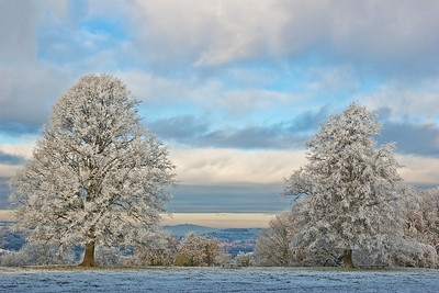 Hoar Frost and May Hill-9309.jpg