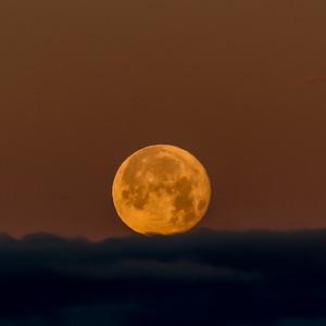 Cushioned Moonset