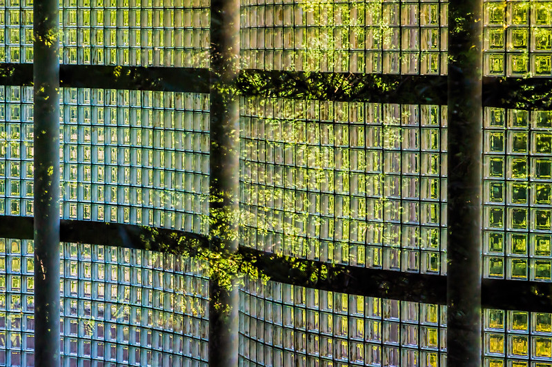 Featured:  Inside Out.  Window reflection abstract