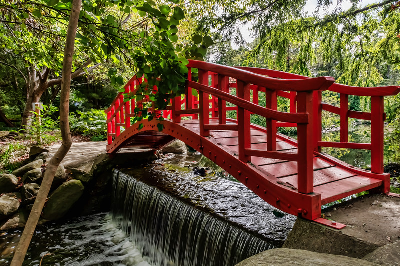 Red Bridge, Oriental Garden, Cranbrook