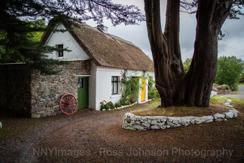 140826-5D316519 - Ireland - Killarney - Ring of Kerry