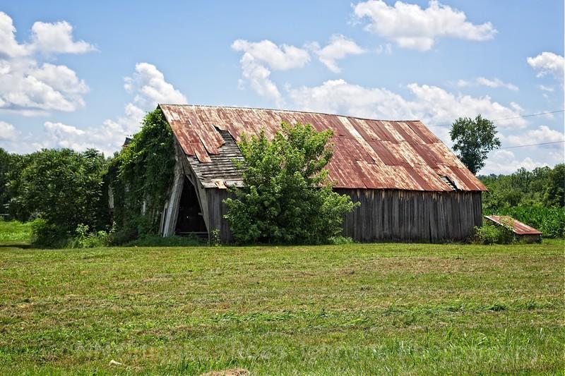 5D3_0100 Barn Near Forked Run, OhioMod