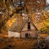 Ye Olde homestead