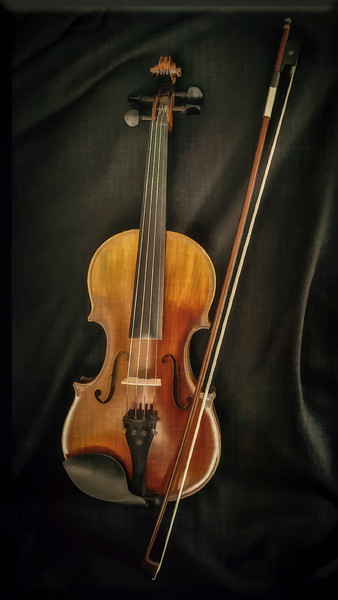 Portrait of a Violin