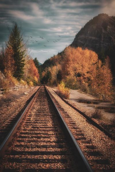 Train Tracks in Autumn