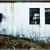 2013-04-17. Neglected Wall. This is the side wall of a popular business.<br /> Cincinnati, OH<br /> <br /> Thank you so much for your comments on my smoke tree photo yesterday!
