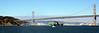San Francisco-Oakland Bay Bridge and Yerba Buena Island, 30 Jun 2008.