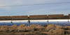 Kramer Junction Solar Electric Generating Station, Highway 395, Kramer Junction, CA. 11 Mar 2008