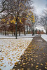 Front campus after early snow, 11-12-2013