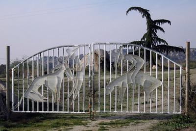 A neighbor's gate, 24 Mar 2006