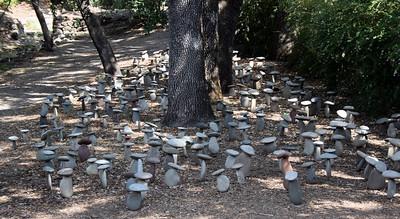 Stone mushrooms. Domaine Chandon Winery, Yountville, CA. 30 Jun 2008.