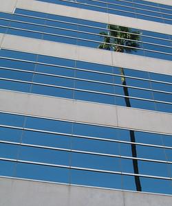 Riverside, CA 18 Jan 2008