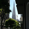 Transamerica Building, San Francisco. 30 Jun 2008.