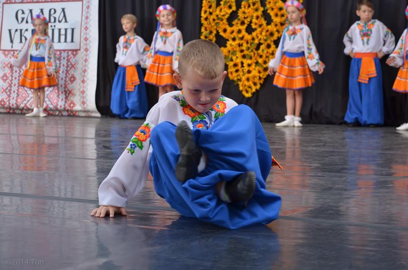 Sts Volodymyr & Olha Village Fest 2014