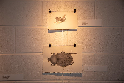 Student art exhibit-4395