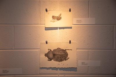 Student art exhibit-4395