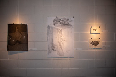Student art exhibit-4399