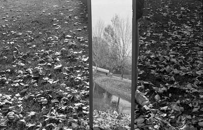 Untitled, Alex Colon