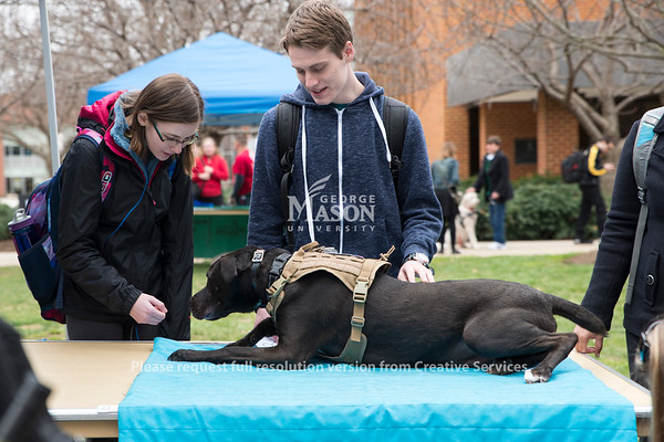 Dylan Arthur arranged Paws for a Cause to educate people about service dogs. Dylan is a senior management major who has a service dog because of his PTSD from his career as a military cop. (Bethany Camp/Creative Services/George Mason University)