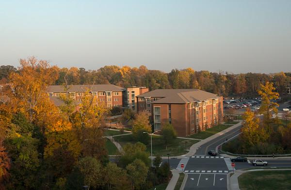 Housing in Shenandoah Neighborhood