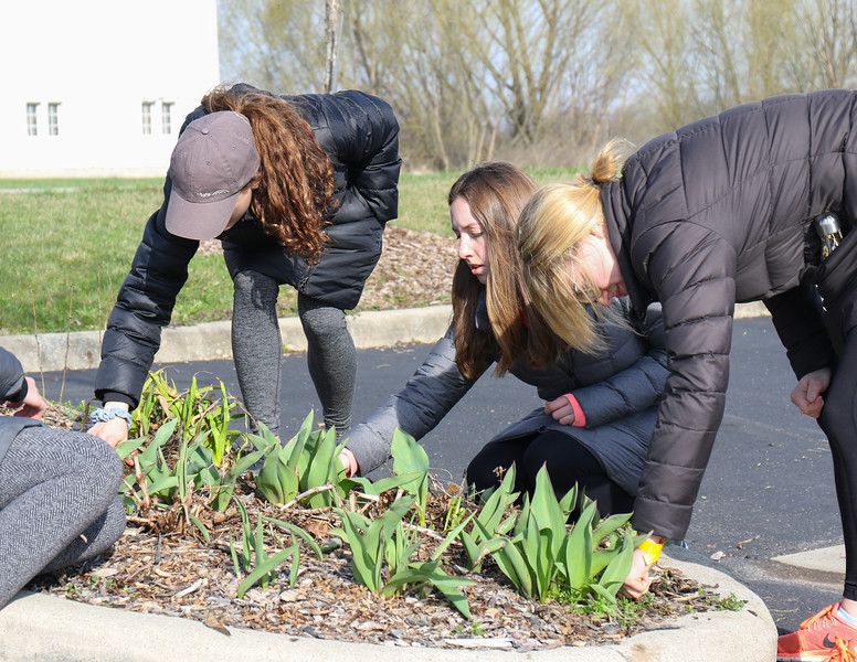 Pay it Forward Spring into Service