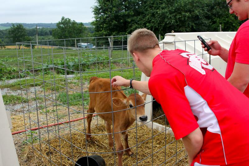 2014 Buckeye Dairy Farm