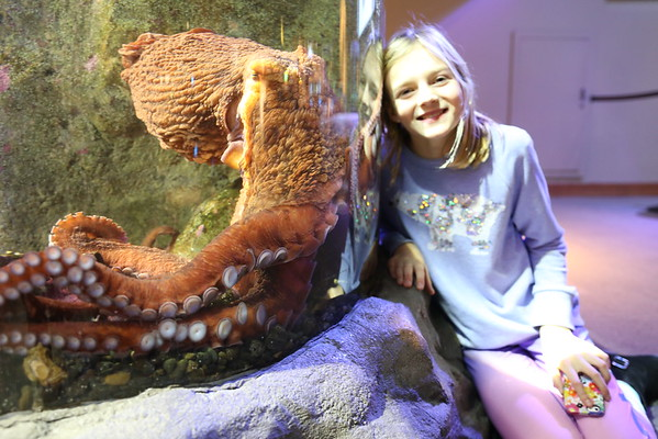 2016 Middle School Science Club goes to Seattle Aquarium