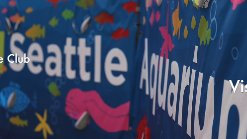 VIDEO: 2016 SAAS Middle School Science Club visits the Seattle Aquarium