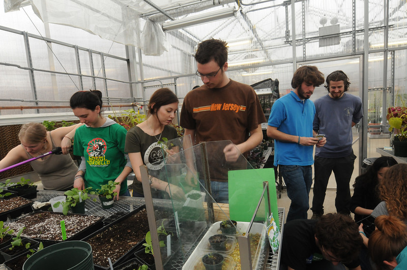 Mason Garden Crew in the greenhouse. Photo by Evan Cantwell/Creative Services/George Mason University