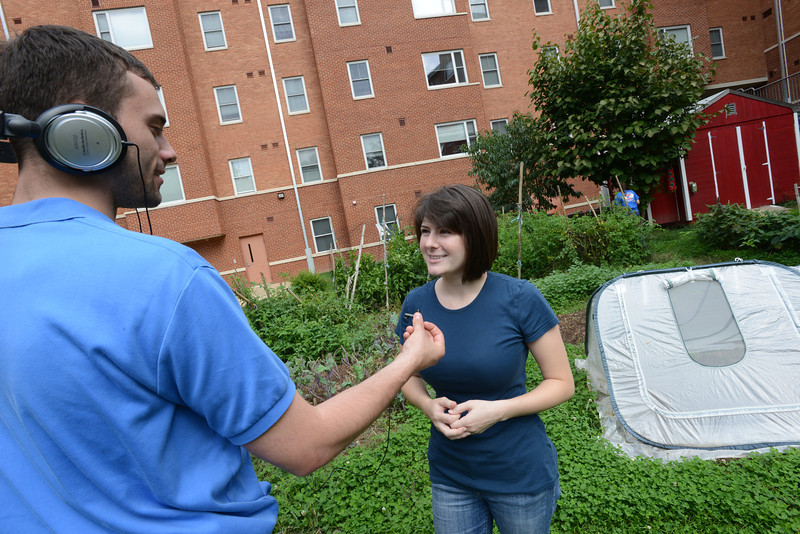 GMU Organic Gardening Association students volunteer to manage and harvest healthy vegetables to donate and ditribute with local food banks and the campus community. Photo by Evan Cantwell/George Mason University