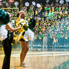 Mason Madness 2017; patriot