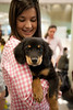 Students play with puppies at the Law School's Puppy Day in Robert A. Levy Atrium in Hazel Hall at George Mason University's Arlington Campus. The event, part of de-stress week, is hosted by A Forever-Home Rescue Foundation and Homeward Trails, two non-profit animal rescue groups. Photo by Alexis Glenn/Creative Services