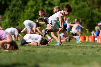 Fun and Field Day 2017