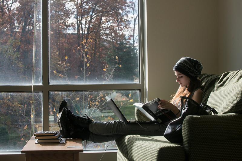Eastern Shore study lounge