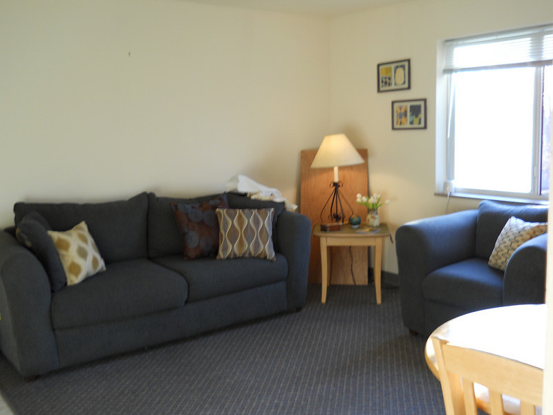 This is the living room. The Cotta Hall apartment comes with a couch, chair, end table, and lamp. Each apartment has its own phone line and cable television hookup (Charter Cable Extended Basic).