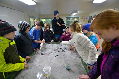 2016 6th Grade SEE Trip •Olympic Peninsula with NatureBridge